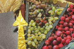 Harvest. Grapes, Radishes and Corn royalty free stock image