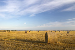 Harvest at Hadleigh, Essex, England Royalty Free Stock Image