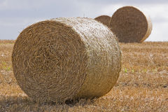 Harvest Hay Bales Royalty Free Stock Images