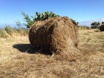 Harvest, hay balls Stock Image