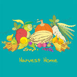 Harvest home Royalty Free Stock Photos