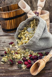 Harvest hop cones cut Stock Photo