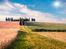 Free Harvest In Tuscany. Typical Tuscan View With Farmhouse And Field Of Wheat. Sunny Summer View Of Italian Countryside, Val D`Orcia Stock Photography - 159463022