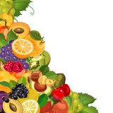 Harvest juicy fruit and berries, vector illustration. Green grocery background for banners, cards, billboards, posters. stock illustration