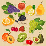 Harvest juicy fruit and berries, vector illustration. Green grocery Stock Photography