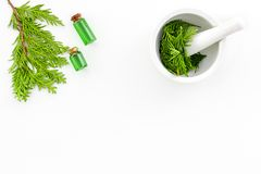 Harvest juniper as medical herbs. Make juniper oil. Juniper sprigs in mortar on white background top view copy space. Harvest juniper as medical herbs. Make stock photo