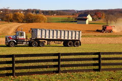 Harvest in Lancaster County, Pennsylvania Royalty Free Stock Photos