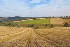 Harvest landscape in autumn. Round bales in a picturesque agricultural landscape with patchwork fields under a blue cloudy sky in the yorkshire wolds england Royalty Free Stock Photos
