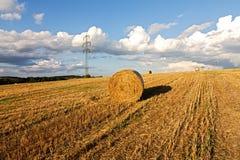 Harvest landscape Stock Image