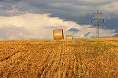 Harvest landscape Stock Photography