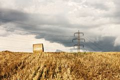 Harvest landscape Stock Photography