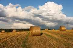 Harvest landscape Royalty Free Stock Photography