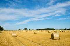 Harvest landscape near Tetbury, Gloucestershire, UK Stock Photo
