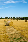 Harvest landscape near Tetbury, Gloucestershire, UK Stock Photos