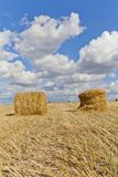 Harvest landscape with straw bales amongst fields in autumn. In a cloudy day, Russia, Ukraine, Belarus Stock Photo
