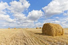 Harvest landscape with straw bales amongst fields in autumn. In a cloudy day, Russia, Ukraine, Belarus Stock Image