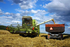 Harvest machine loading seeds in to trailer. On the field Royalty Free Stock Photography