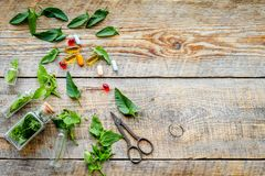 Harvest medicinal herb. Leaves, bottles and sciccors on wooden background top view copyspace Royalty Free Stock Photos