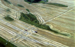 Harvest in Montana. Aerial view of harvesting a wheat field in Montana Stock Image