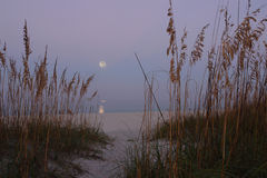 The Harvest Moon. Shining over the Gulf of Mexico Stock Images