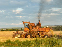 Harvest. Old harvester removes the grain in the Stavropol region Stock Image