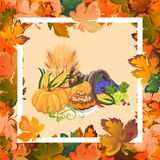 Harvest organic foods like fruit and vegetables, happy thanksgiving dinner card or banner background, harvesting vector Royalty Free Stock Image