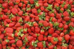 Spring summer detox fruit vegetable diet. Close up of harvest pile. Supermarket stand of clean and shiny vegetables / fruits assor. Harvest pile of ripe local stock image