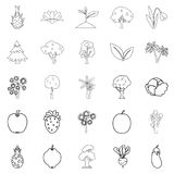 Harvest plants icons set, outline style. Harvest plants icons set. Outline set of 25 harvest plants vector icons for web isolated on white background Stock Image