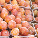 Harvest plums. Plum harvest texture for background (selective focus Royalty Free Stock Photos