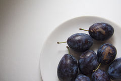 Harvest of plums Stock Photography