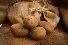 Harvest potatoes Stock Photo