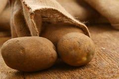Harvest potatoes Royalty Free Stock Photo