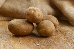 Harvest potatoes Stock Photos