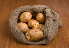 Harvest potatoes in burlap sack Royalty Free Stock Photos