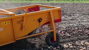 Harvest potatoes with modern potato digger stock video footage