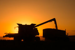 Harvest on the Prairies Royalty Free Stock Images