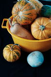 Pumpkins On Black background , halloween, orange pumpkins , many pumpkins, orange color, orange vegetables, autumn harvest, gourd  Royalty Free Stock Images