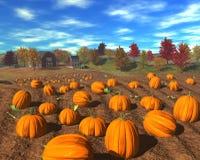 Harvest_pumpkins Fotografia Stock Libera da Diritti