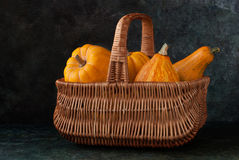 Harvest of  pumpkins in a basket. Variety of pumpkins in the basket on a dark background Stock Images
