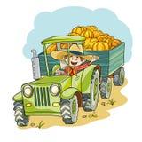 Harvest pumpkins Royalty Free Stock Images