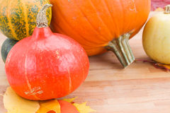 Harvest of pumpkins on a table Stock Photography