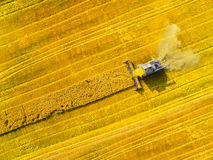 Harvest of rapeseed field. Aerial view of combine harvester. Harvest of rapeseed field. Industrial background on agricultural theme. Biofuel production from stock photos