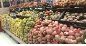 Harvest raw potatoes in burlap sack Stock Images