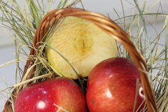 The harvest of red apples Royalty Free Stock Photography