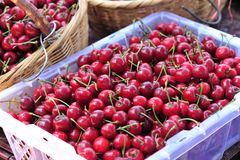 Harvest red cherry fruits Royalty Free Stock Photos