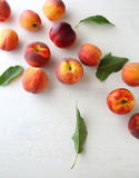 Harvest of ripe peaches Stock Photo