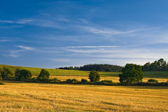 Harvest scenery Royalty Free Stock Image