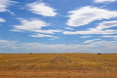 After harvest - Sea Lake Stock Photography
