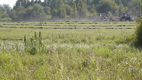 Harvest season stock video