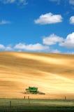 Harvest Season. One Combine Harvesting Wheat in an open field Stock Photos